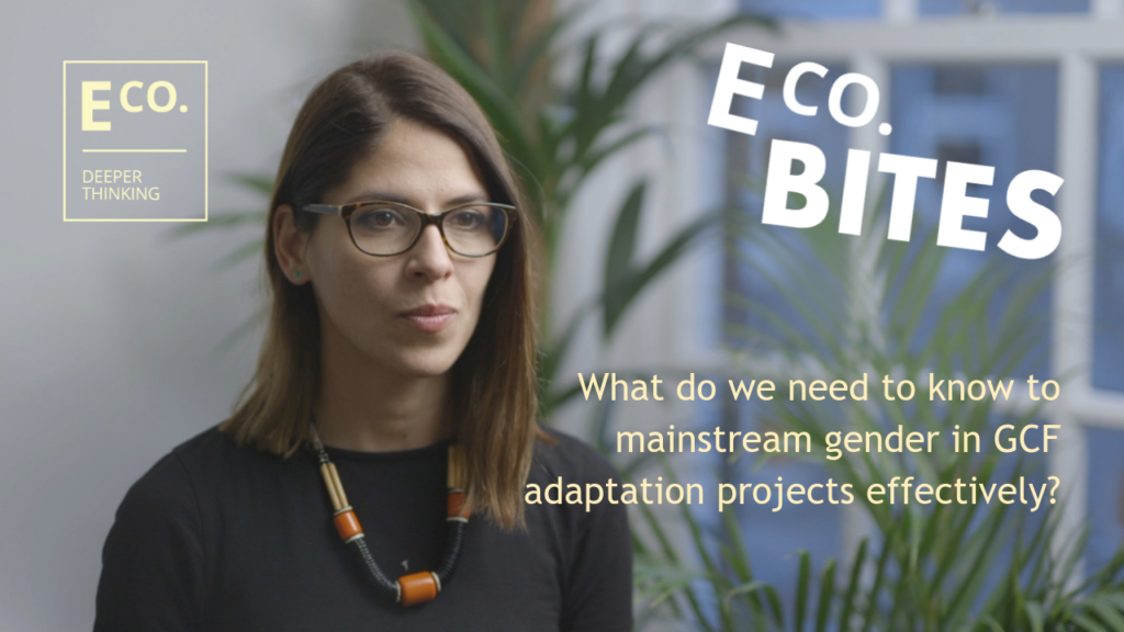 E Co. bites: What do we need to know to mainstream gender in GCF adaptation projects?