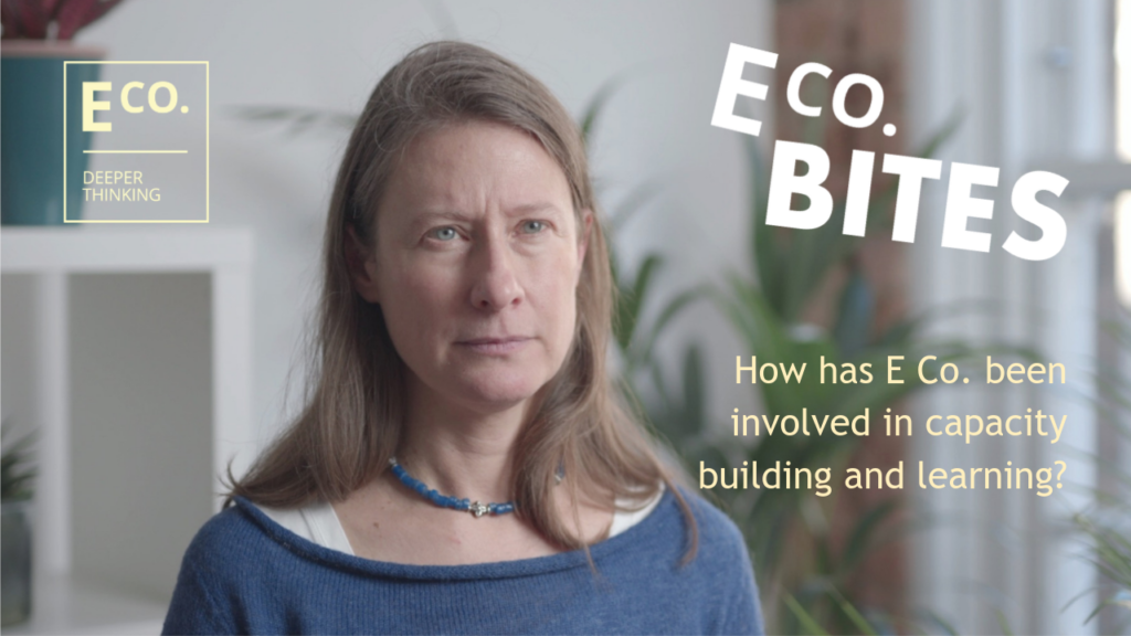 E Co. bites: How has E Co. been involved in capacity building and learning?