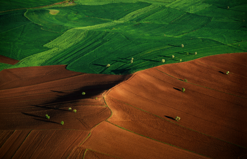 News: IPCC special report on Climate Change and Land