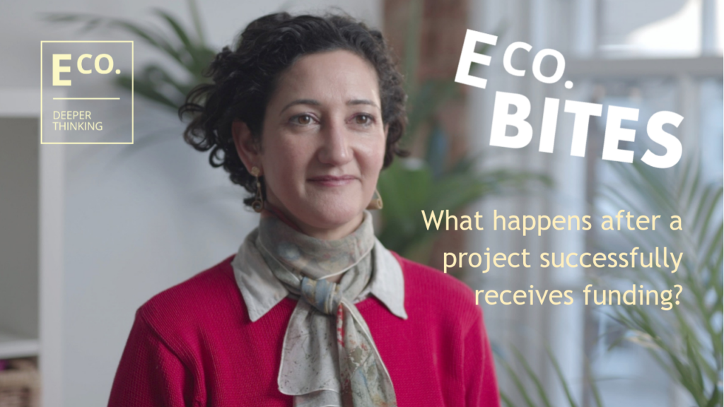 E Co. bites: What happens after a project successfully receives funding?