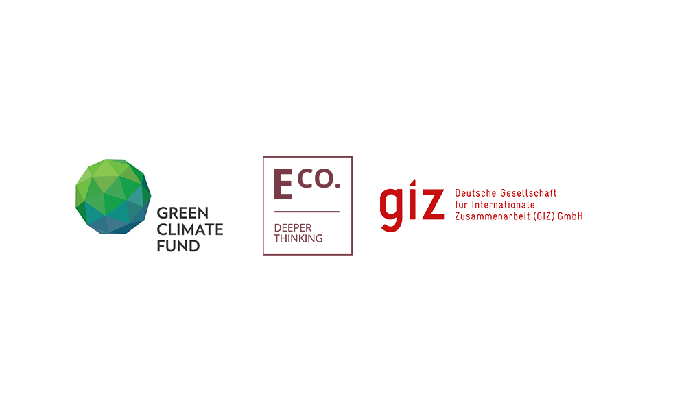 Hosting: Webinar – Renewable Energy Investment Guidance, in partnership with GCF and GIZ