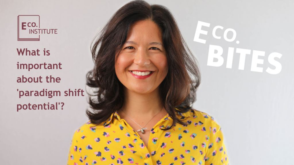 E Co. bites: What is important about the 'paradigm shift potential'?