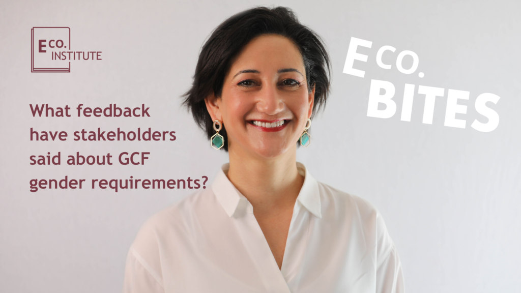 E Co bites: What feedback have stakeholders said about GCF gender requirements?