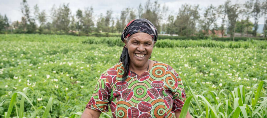 We're offsetting our carbon emissions: African Biogas Carbon programme in Kenya