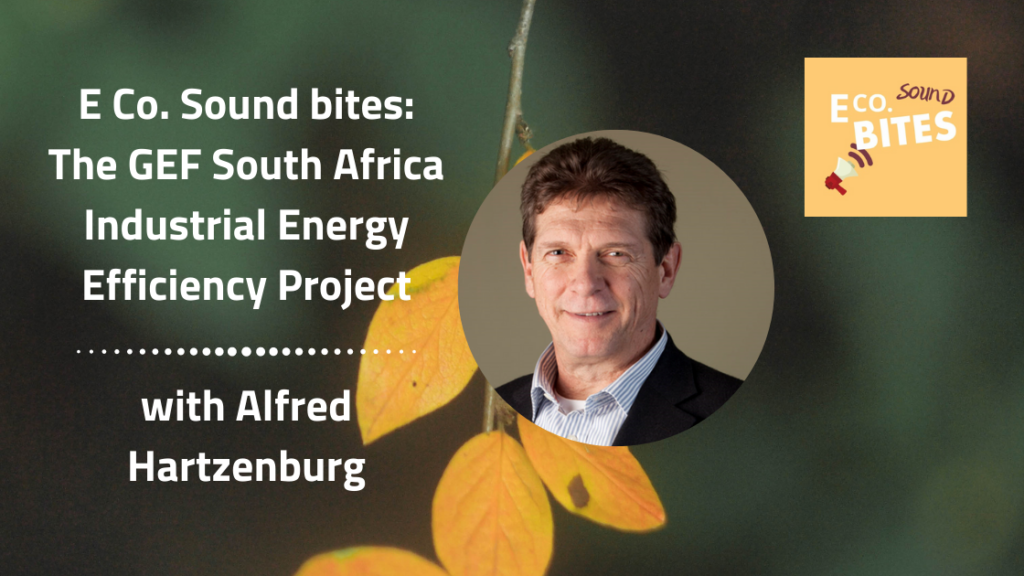 E Co. Sound bites: Alfred Hartzenburg on the GEF South Africa Industrial Energy Efficiency Project